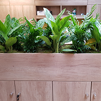 Credenza with planter